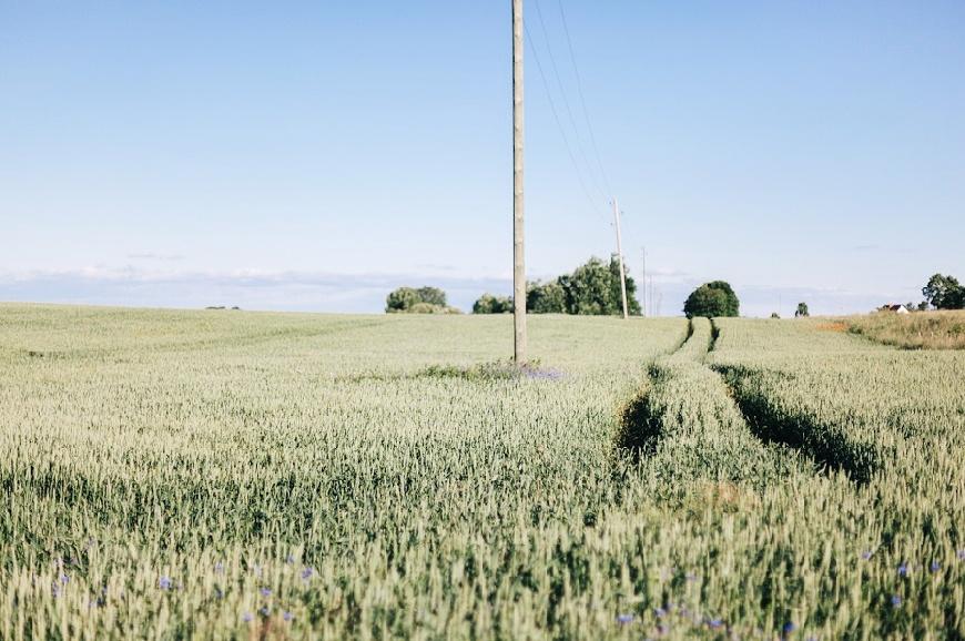 Lauksaimnieki kritizē EK stratēģiju «No lauka līdz galdam»