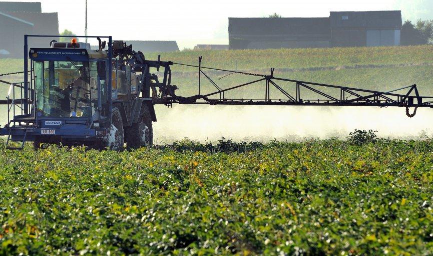 Miglošanas ierobežojumi biedē daļu lauksaimnieku