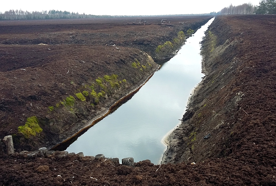 Pāreja uz videi draudzīgu saimniekošanu vissmagāk varētu skart Vidzemi un Latgali