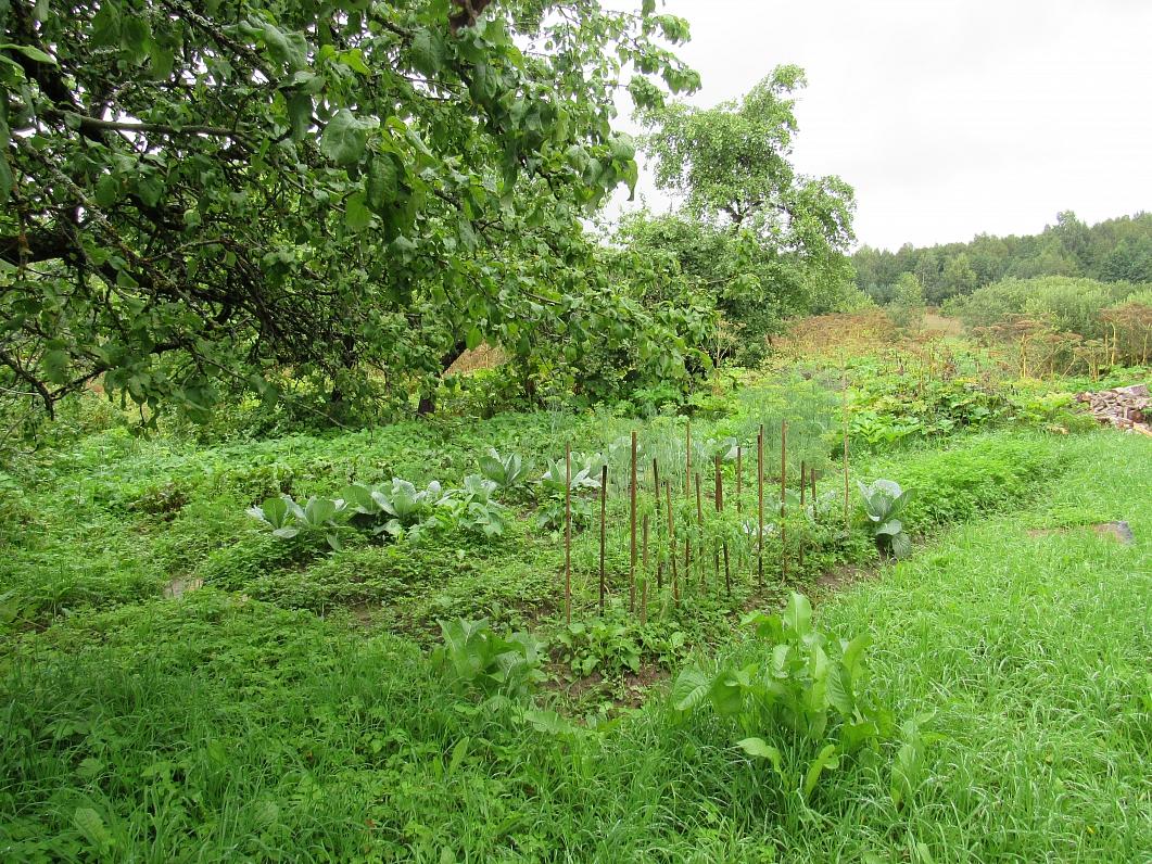 Резекненцев мотивируют заводить огороды