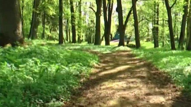 Mežotnē ieguldīs 104 000 eiro muižas parka atjaunošanai