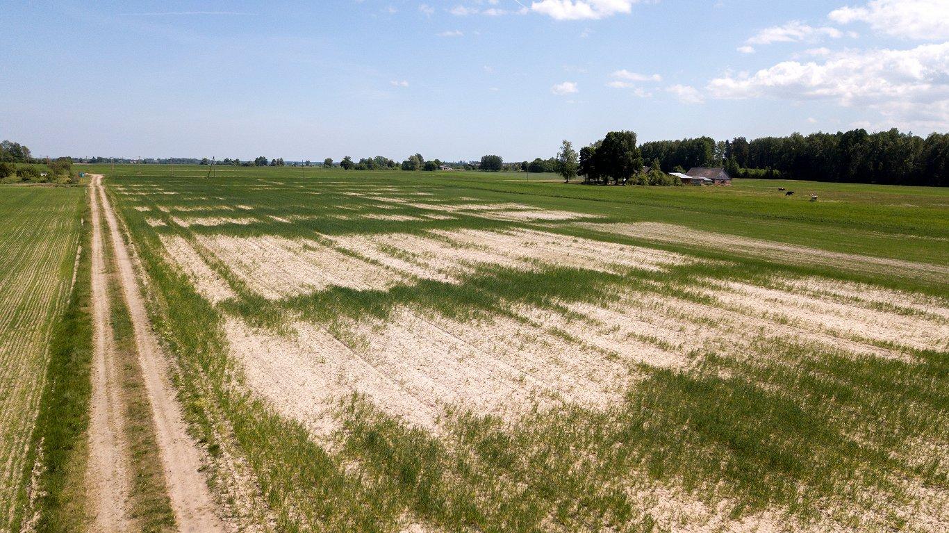 При страховании крестьян предусмотрят особую господдержку — на случай засухи