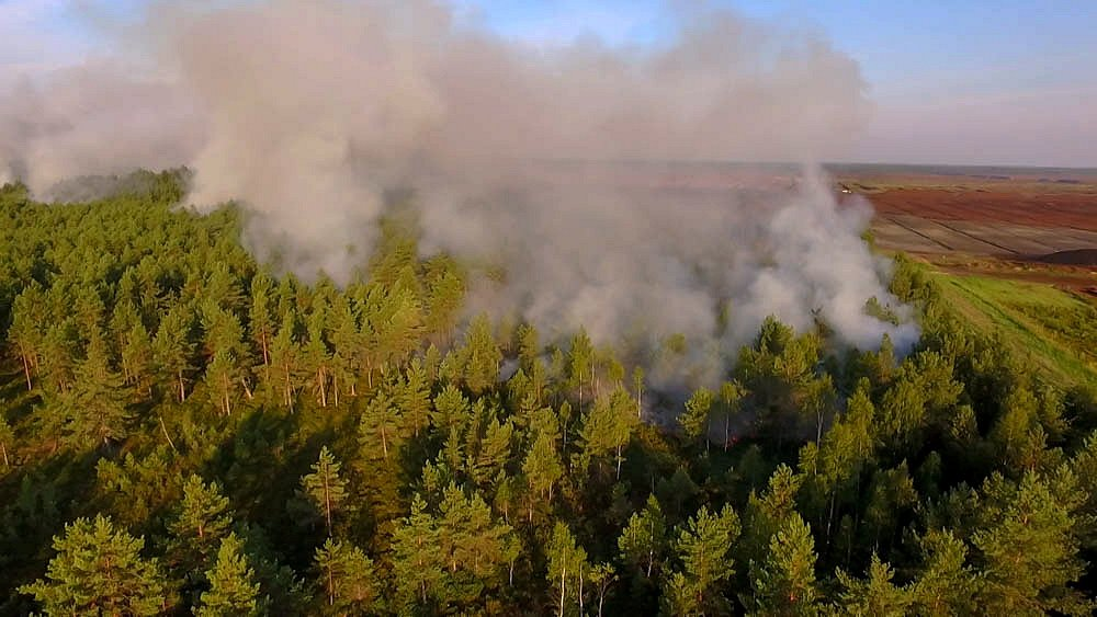 Из поселка близ горящих торфяников эвакуируют людей