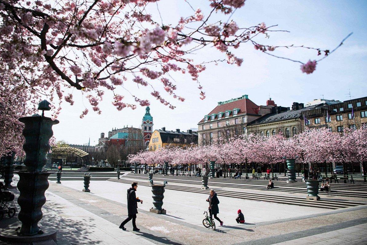 Latviete Ravita: Zviedrijā Covid-19 ierobežošanā paļaujas uz cilvēku godaprātu
