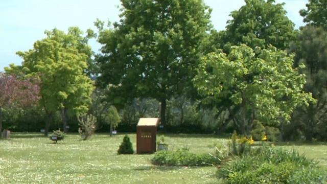 Briežu dzimtai savs likteņdārzs – katra Sibīrijā mirušā dzimtas locekļa piemiņai iestādīts koks