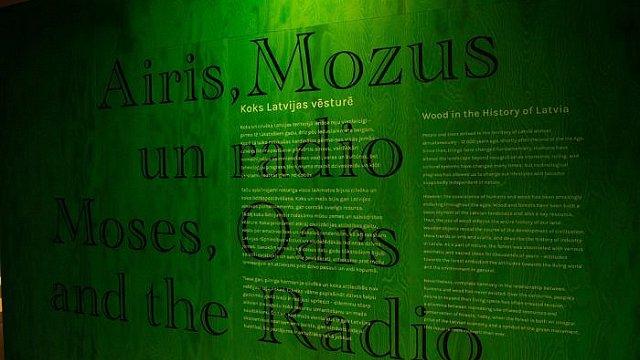 Izstādē «Airis, Mozus un radio. Koks Latvijas vēsturē» uzlūko cilvēka un koka attiecības