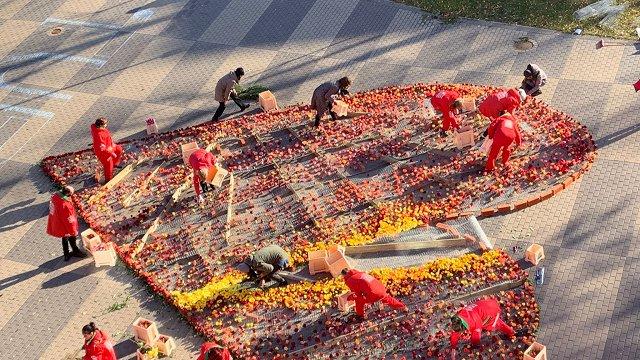 Mediķiem grūtajā Covid-19 izplatības laikā dāvina 30 000 ziedu sirdi